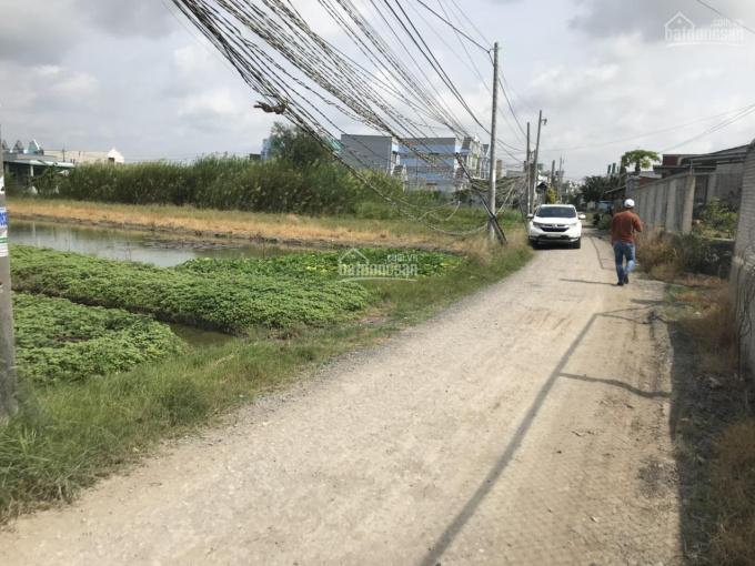 Bán đất lúa xã Long Thượng mặt tiền đường Hai Tặng, đường rộng 6m DT = 2337m2, giá 3.7 triệu/m2 ảnh 0