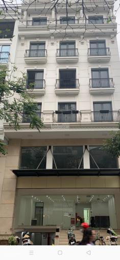 Chính chủ cho thuê mặt bằng tầng 4,6 tại Phường Ngô Thì Nhậm, 160m2, giá 45 triệu/tháng ảnh 0