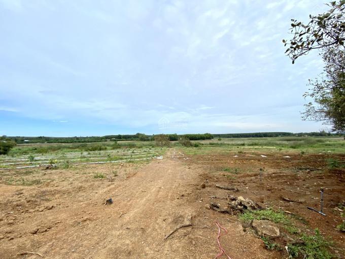 Chính chủ bán 18000m2 đất vườn tại Suối Nho giáp suối, gần sông La Ngà Huyện Định Quán, giá 4 tỷ ảnh 0