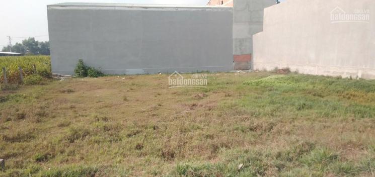 Chủ cần bán lô đất xã Phước Hiệp Củ Chi DT 5x25=125m2, full thổ cư ảnh 0