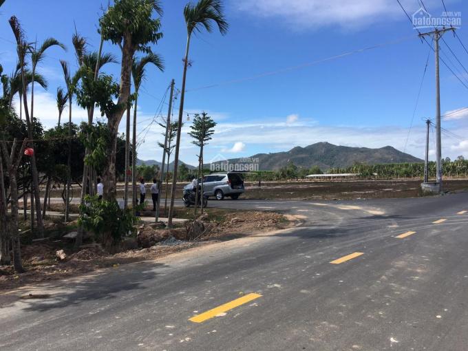 Đất nền khu biệt thự nghỉ dưỡng cao cấp ven biển Long Hải ảnh 0