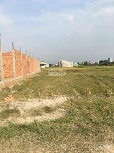20x50 thổ cư 1 sẹc đường nhựa Giồng Lớn, cách cây xăng Minh Toàn 1,5km. SHR - XD tự do. 0986252836 ảnh 0