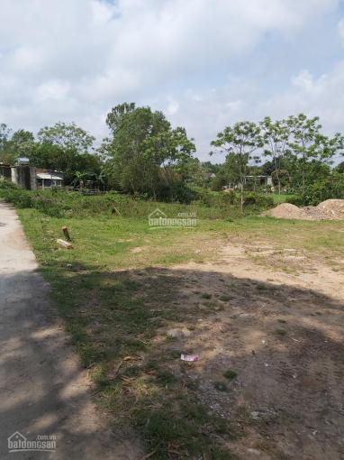 Cần việc bán gấp lô đất vườn ở tiểu khu 7, Phường Bắc Lý, Thành Phố Đồng Hới, Quảng Bình ảnh 0