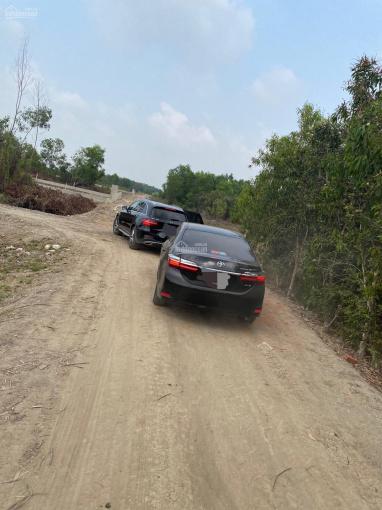 Đất làm nhà vườn MT sông tại Phước Khánh Nhơn Trạch Đồng Nai, cách phà Cát Lái 9km, đường ô tô ảnh 0