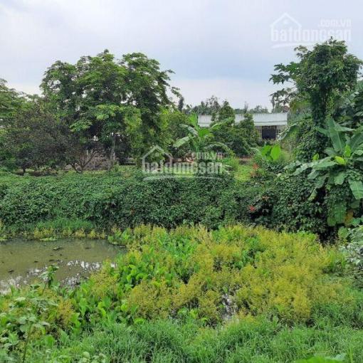 Khu dân cư Phú Điền, 15m x 30m, có 160m2 thổ cư, 890 triệu ảnh 0
