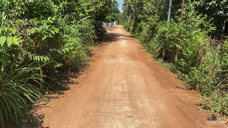 1100m2 đất nông doanh, Xuân Tân, Long Khánh ảnh 0