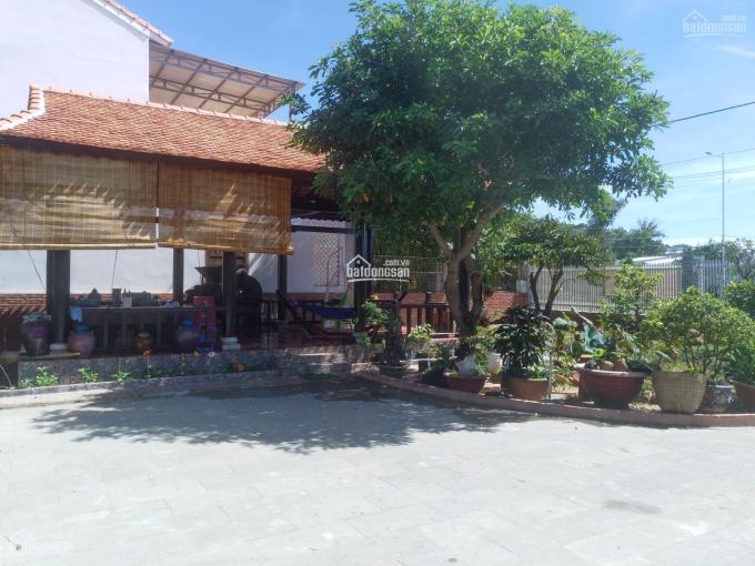 Bán đất đường Nguyễn Tất Thành(đ - 36m), thị trấn Long Hải, Bà Rịa Vũng Tàu ảnh 0