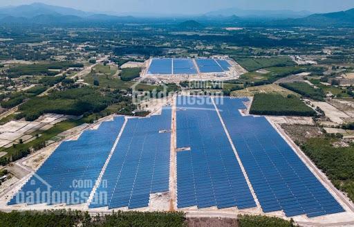 Bán dự án 50MWp điện năng lượng tại Bình Định, pháp lý đầy đủ ảnh 0