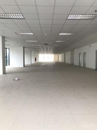 Bán sàn thương mại - văn phòng tại Nguyễn Tuân 3000 m2 giá hấp dẫn ảnh 0