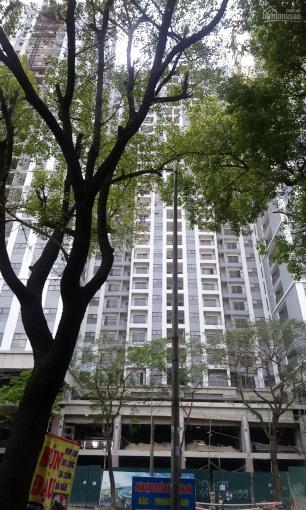 Cho thuê mặt sàn tầng 1 - 2 toà nhà Thái Thịnh, 400m2*2 tầng ảnh 0