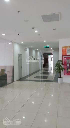 Chính chủ bán gấp sàn thương mại tầng 3 chung cư Gelexia 885 Tam Trinh cho thuê 20tr/tháng ảnh 0