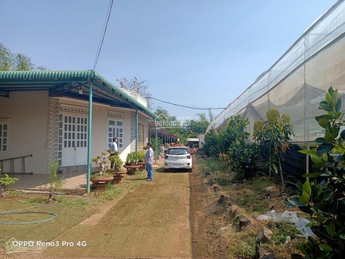 Nhà vườn 8100m2 suối bao quanh, cạnh KDL Suối Ong, có nhà 3 phòng ngủ, cách ngã 3 Duy Hòa 400m ảnh 0