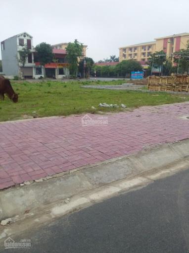 Chính chủ cần bán thửa đất đấu giá Nguyễn Tất Thành - Lam Sơn, TP Hưng Yên, giá: 3,55 tỷ ảnh 0