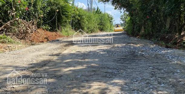 Duy nhất 1 lô 1000m2 giá 480 triệu có sẵn vườn cây ăn trái trung tâm KCN Định Quán quốc lộ 20 ảnh 0