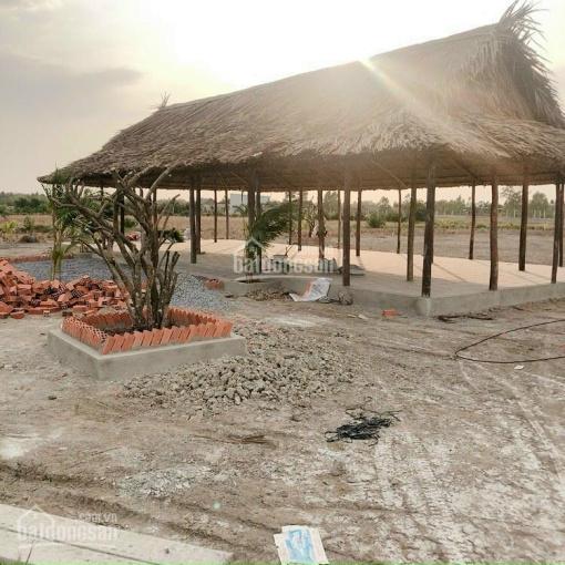 Bán đất xây dựng nhà vườn diện tích 1000m2, mặt sông mặt đường xe hơi, giá từ 950tr - 3.6 tỷ ảnh 0