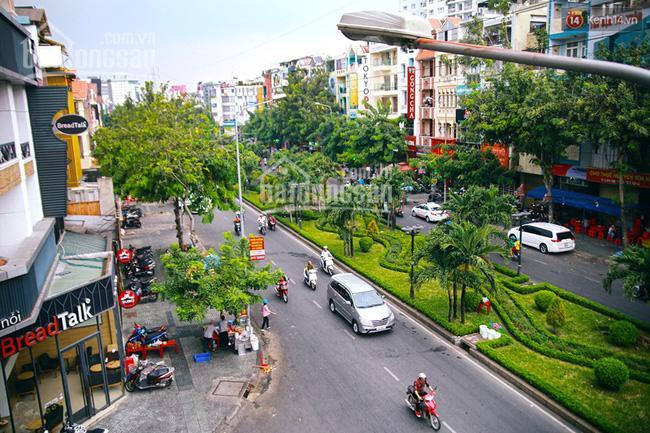 Bán biệt thự khu dân cư Miếu Nổi Phan Xích Long, 8.2x16.1m, 3 tầng, giá 32tỷ ảnh 0