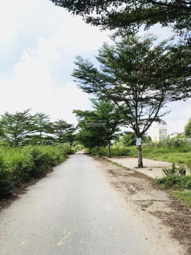 Chuyên đất nền dự án P. Phú Hữu, công ty Đông Dương đường Bưng Ông Thoàn, giá tốt nhất ảnh 0