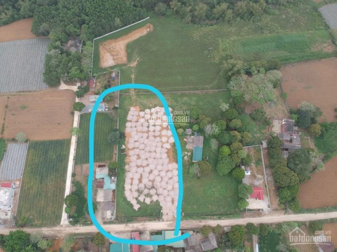 Bán gấp một số mảnh đất từ 125m2 đến 7100m2 ở Nho Quan, Ninh Bình ảnh 0
