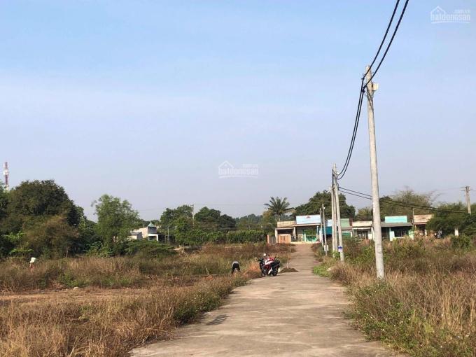 Bán gấp đất Quận 9 DT 80m2 SHR ảnh 0