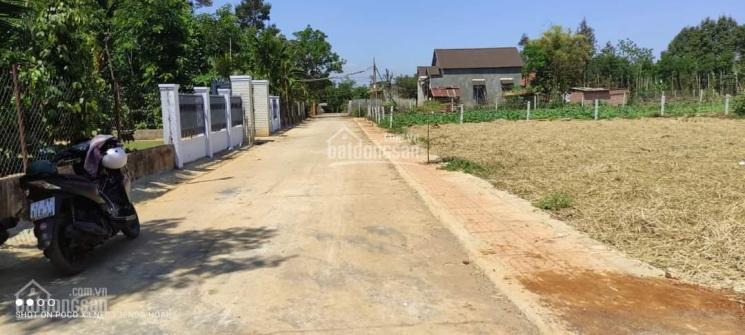 Đất thổ cư sau chợ Trung Hòa - Cư Kuin ảnh 0