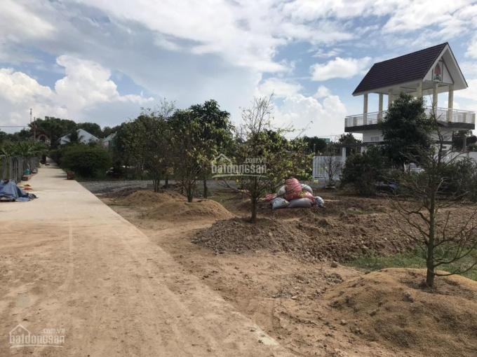 Chính chủ gửi bán lô đất 1992m2, có 300m2 thổ cư, đất sạch đường bê tông, cách Hùng Vương 200m ảnh 0