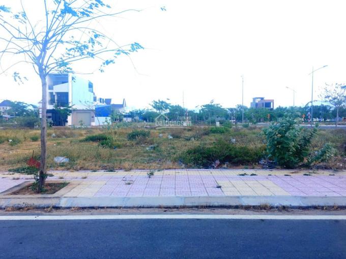 Đất 100m2 thổ cư gần trường học Ischool Ninh Thuận ảnh 0