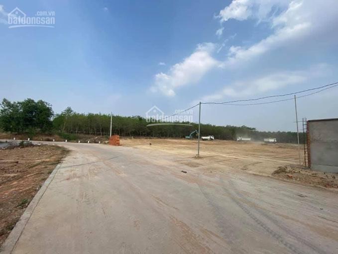 Đất giá rẻ Phú chánh diện tích 300m2 giá 1tỉ gần trường học gần BV Nhi Phú Chánh ảnh 0