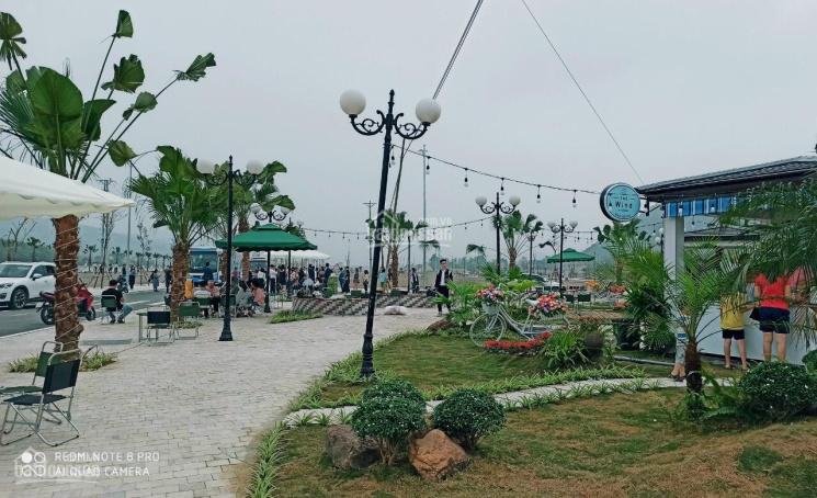 Hot! Siêu dự án đất nền thị trấn Thanh Sơn, tiềm năng tăng giá cao, vị trí đẹp ảnh 0