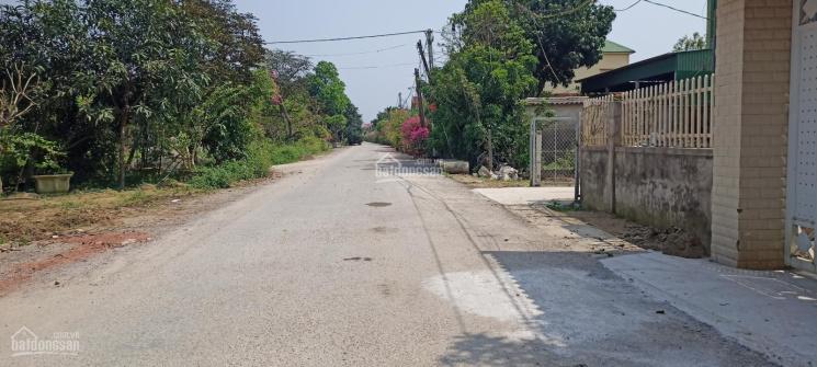 Mới ra lô góc 2 mặt tiền 150 đường to làng hoa cây cảnh Kim Chi, Nghi Ân. LH 0981097368 ảnh 0