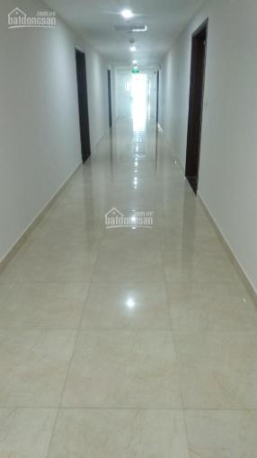 Chung cư IA 20 Ciputra giá 18.5 tr/m2 + chênh 80 tr, diện tích 92.2m2 ở ngay. LH 0937026888 ảnh 0