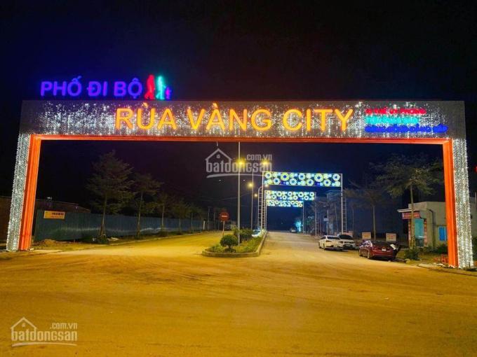 Bán 2 suất liền kề dự án Rùa Vàng City, Vôi, Bắc Giang ảnh 0
