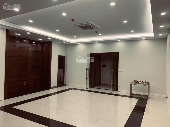 Bán gấp nhà mặt phố Nguyễn Khang 120m2 x 9 tầng, nhà mới cho thuê 134 triệu/tháng ảnh 0
