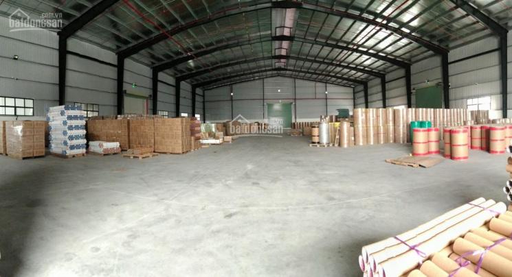 Cho thuê kho xưởng đường Nguyễn Thị Tú, Bình Tân có 4 kho, DT: 300m2 và 500m2, 1000m, 1300m ảnh 0