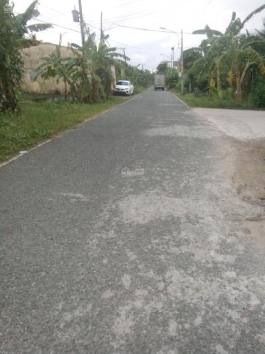 Bán 2 nền đất liền kề ở xã Thới Sơn, Tp Mỹ Tho, tỉnh Tiền Giang ảnh 0