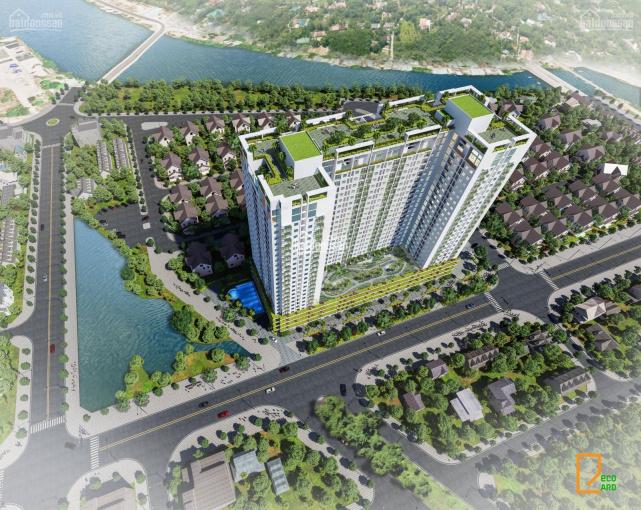 Ecolife Riverside Quy Nhơn căn hộ không chỉ là nơi để sống mà là nơi hưởng thụ ảnh 0