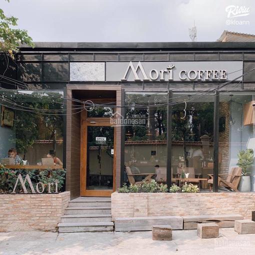Cho thuê mặt bằng kinh doanh phố Triệu Việt Vương 130m2, MT 5,5m - thuê riêng biệt. KD mọi mô hình ảnh 0