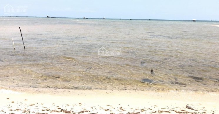 1623m2 Đất mặt biển Cây Sao Hàm Ninh, Phú Quốc, 16m mặt biển, sổ hồng sẵn sàng ảnh 0