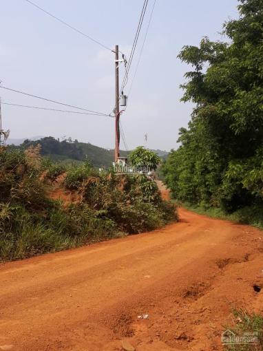 Bán nhanh 3 hec đất thôn 4 Lộc Tân, ngay Bảo Lộc, Lâm Đồng ảnh 0