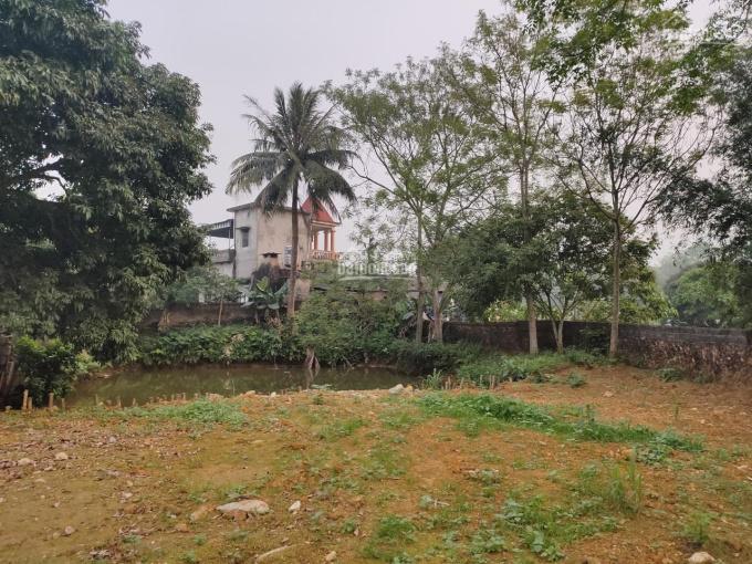 Gia đình cần bán mảnh đất tại Đồng Chanh Nhuận Trạch Lương Sơn Hòa Bình DT: 531m2 có 100m2 thổ cư ảnh 0