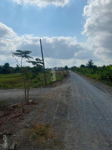 Cần bán đất nông nghiệp mặt tiền Kênh 10, xã Lê Minh Xuân ảnh 0