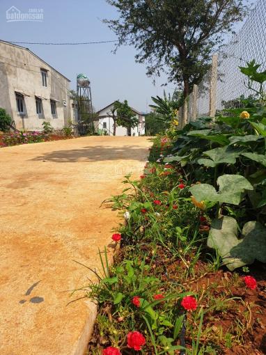 Nhà vườn nghỉ dưỡng 2.100m2 cách trung tâm TP 6km ảnh 0