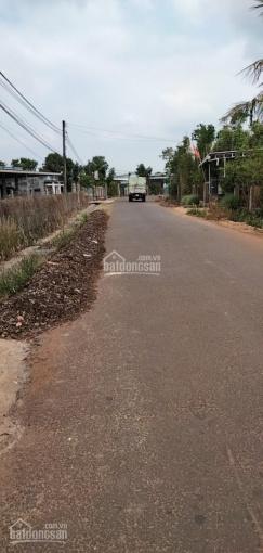 Bán đất ấp 4 xã Hoà Bình - Huyện Xuyên Mộc ảnh 0