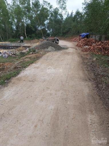 Cần việc bán lô đất ở TK 7, Phường Bắc Lý, Thành Phố Đồng Hới, Tỉnh Quảng Bình ảnh 0