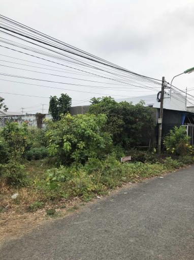 Bán đất mặt tiền cổng KCN Long Đức TP Trà Vinh ảnh 0