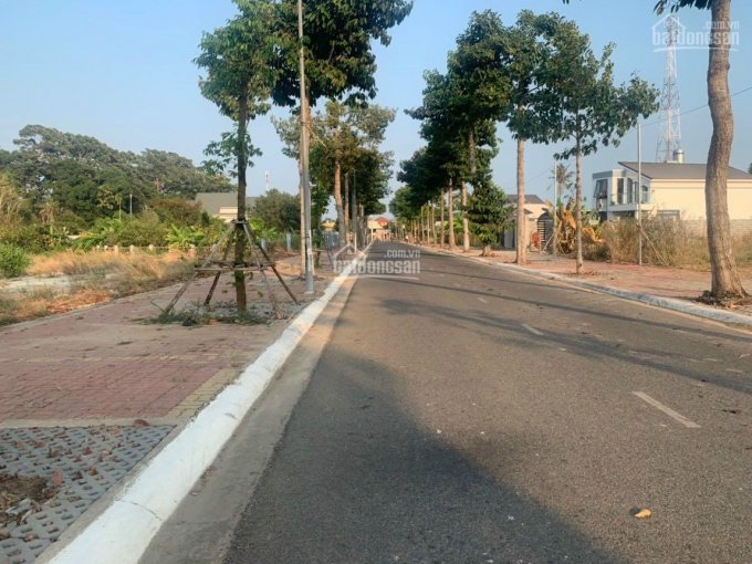 Bán lô đất mặt tiền đường Số 8, trung tâm thị trấn Long Điền, Long Điền, tỉnh Bà Rịa Vũng Tàu ảnh 0