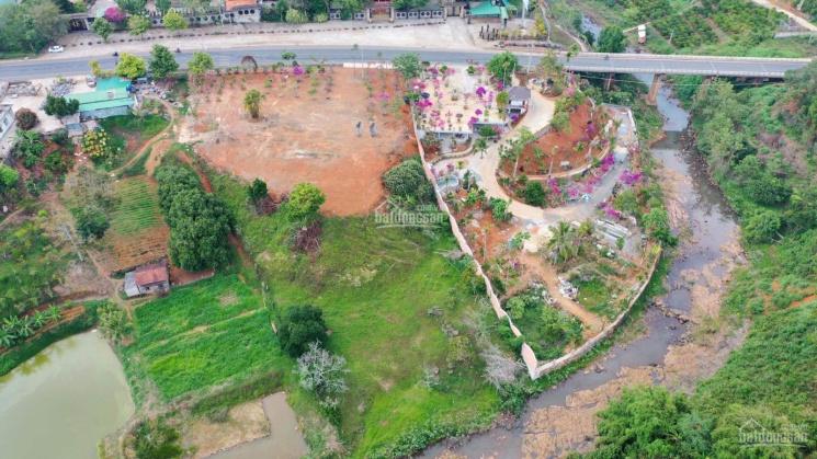 9479m2 đất MT Quốc lộ 20, TP Bảo Lộc, Lâm Đồng ảnh 0