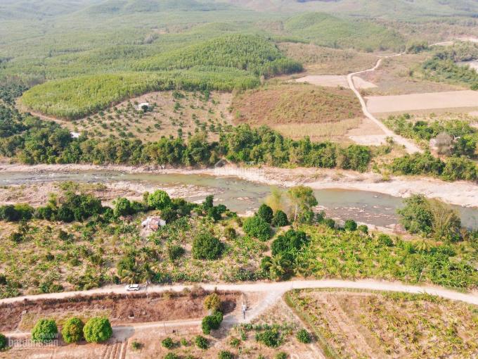 Bán đất vườn ven sông có cây ăn quả phù hợp làm biệt thự sông hoặc làm farm ảnh 0