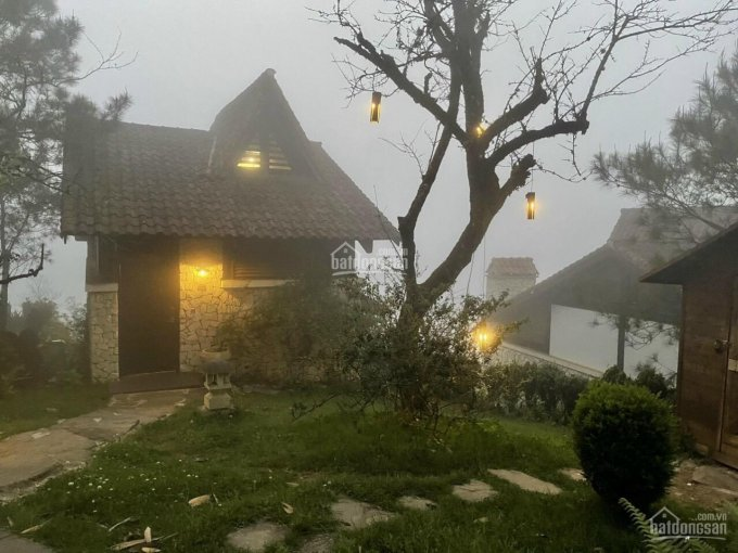 Siêu biệt thự nghỉ dưỡng Làng Pháp Bảo Lộc (bé Đào bán) ảnh 0