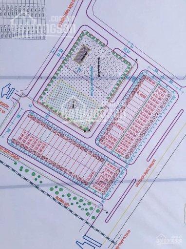 Chính chủ cần bán lô đất có sổ đỏ tại phường Bắc Sơn, Bỉm Sơn, Thanh Hóa ảnh 0