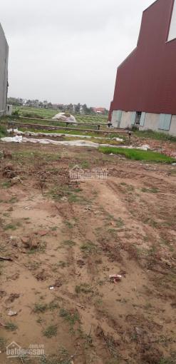 Bán lô đất 169m2 mặt đường 354 Hoà Bình - Vĩnh Bảo - 0345693286 ảnh 0